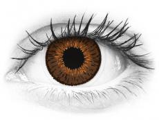 Expressions Colors Brown - brez dioptrije (1 leča)