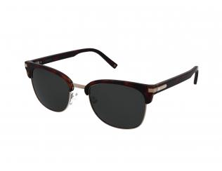 Sončna očala Browline - Polaroid PLD 2076/S 086/UC